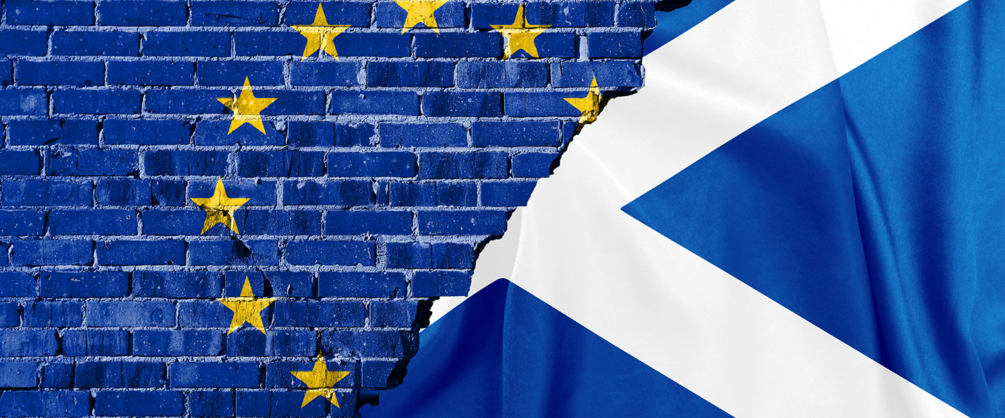 WE SEE NO REASON WHY SCOTLAND  WOULD NOT SUCCEED ECONOMICALLY